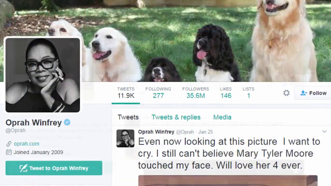 Manage Twitter Followers