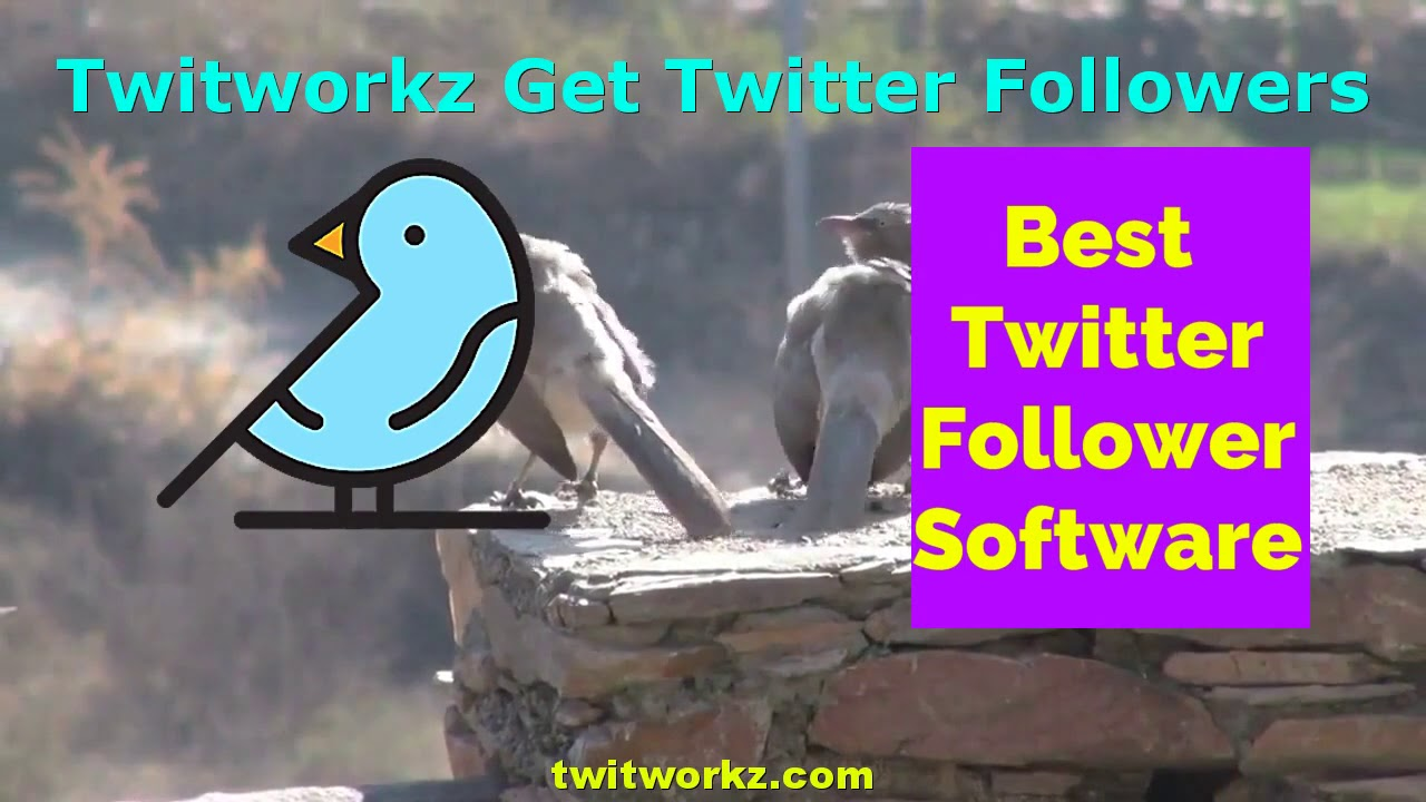 Twitworkz Official