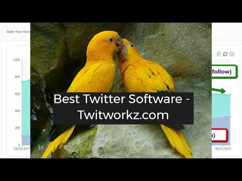 Best Twitter Automation Software